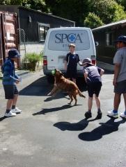 SPCA1